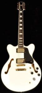 Agile 12 string guitar