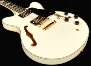 Agile 12 String Guitars