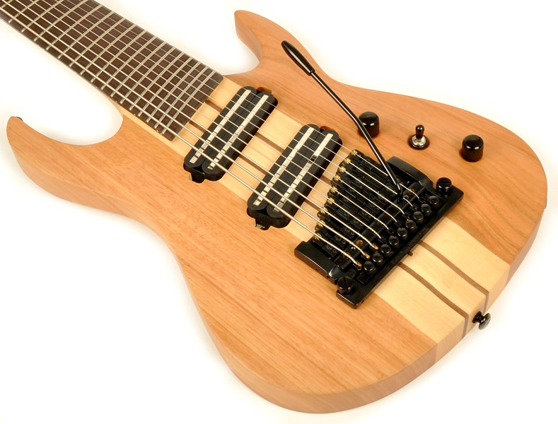 9 string agile guitars