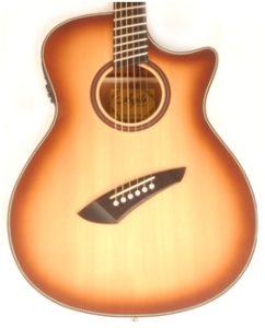 Agile Renaissance 6 String Acoustic